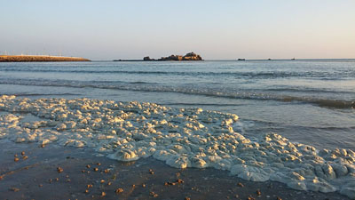 Foam in St. Aubins Bay, (picture Chris Perkins)
