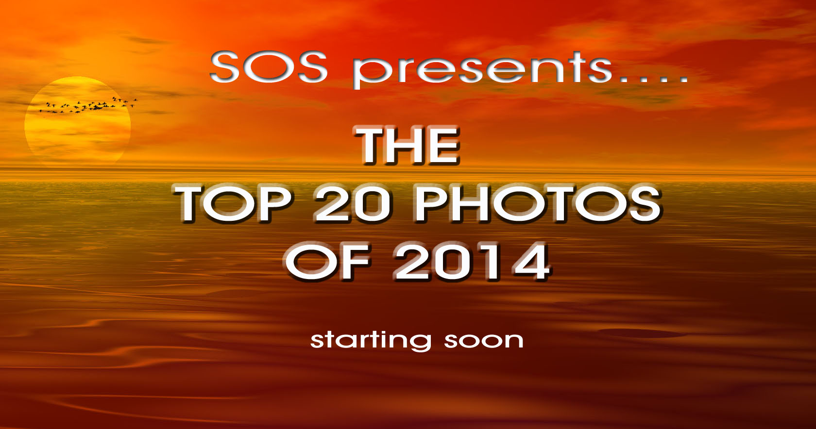 Launch of SOS Jersey's 2014 Photo Competition!