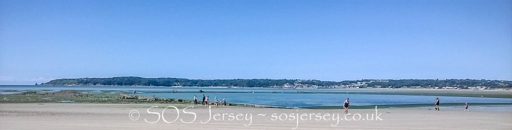 Sea Lettuce Problems in Jersey July 2016 - Save Our Shoreline Jersey