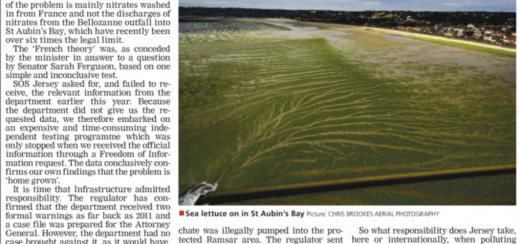 Sea lettuce problem – Department of Infrastructure must admit culpability