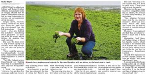 Barges for sea lettuce - Jersey Evening Post - Jacqui carrel - SOS Jersey - 17 February 2017