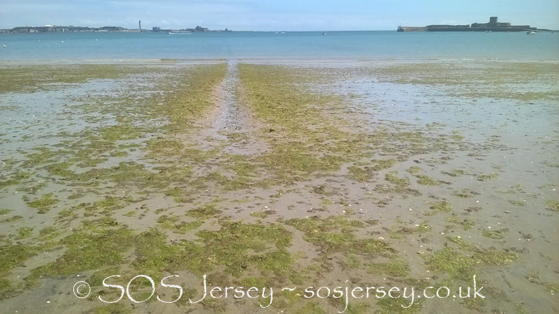 Sea lettuce furrowing trials in St Aubin's Bay - day 2, second tide since furrowing on way out - 31 May 2017