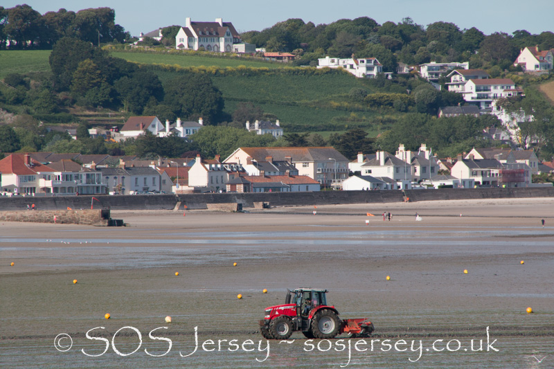 Sea lettuce trials in Jersey begin - 30th May 2017 - Jacqui Carrel Photography-3