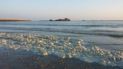 Foam in St. Aubins Bay, (picture Chris Perkins)