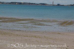Sea lettuce furrowing trials – day 2